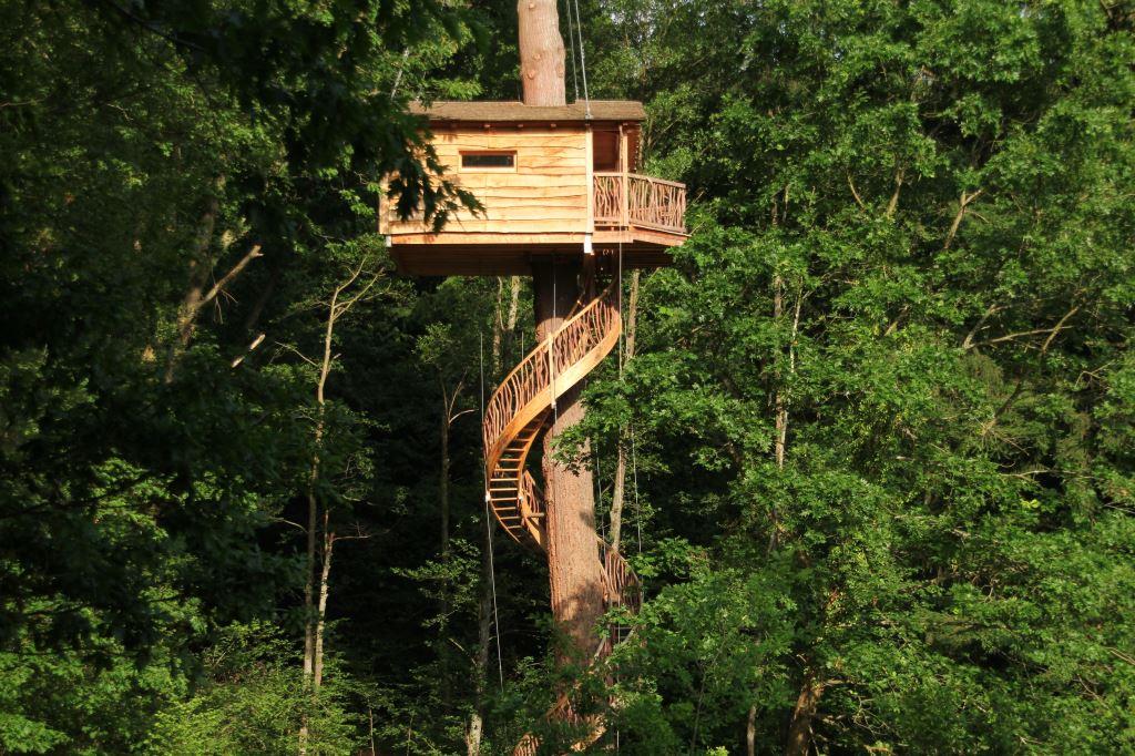 img Casas en árboles